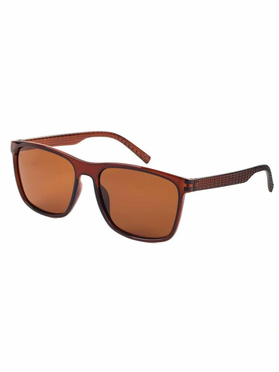 Солнцезащитные очки BOSHI 4043 Коричневый глянцевый