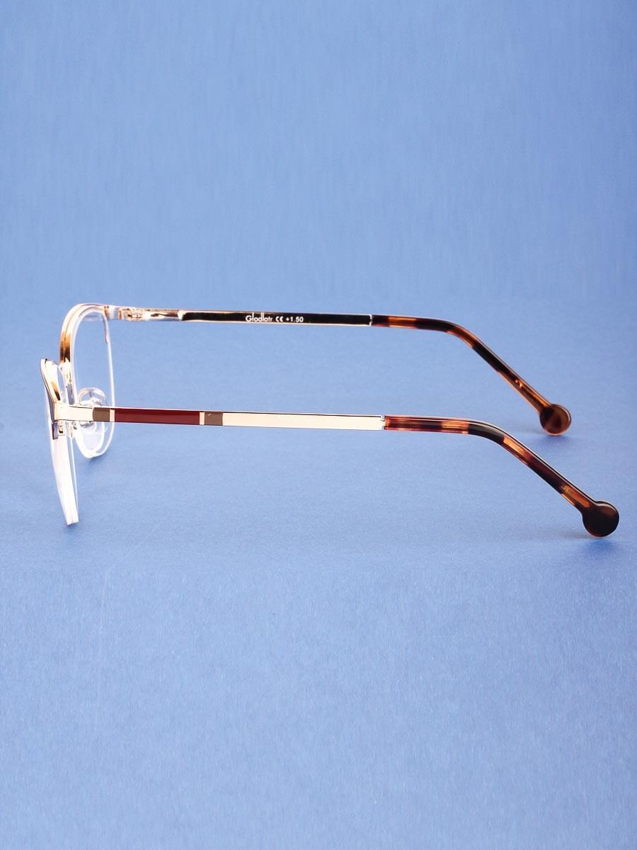 Готовые очки Glodiatr G1660 C4